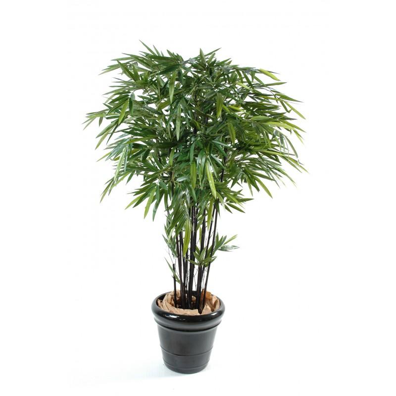 le bonsai dcoratif intrieur une touche naturelle la maison